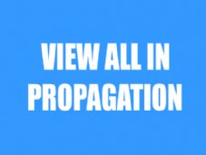View All Propagation